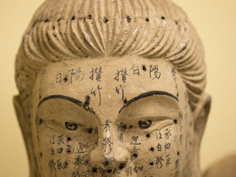 TCM acupuncture model statue